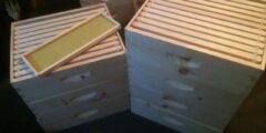 Hive Specials