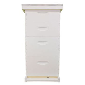 10 Frame Traditional Growing Apiary Kit-Painted