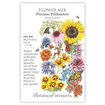 Flower Mix Precious Pollinators