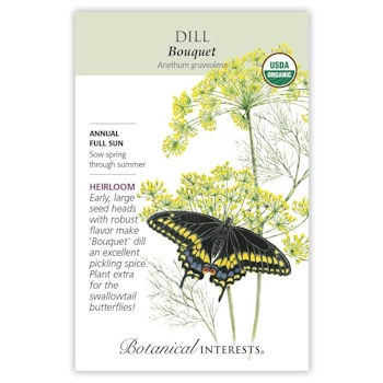 Dill (Bouquet)