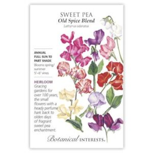 Sweet Pea Old Spice Blend