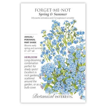 Forget-Me-Not Spring & Summer