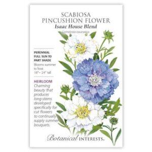 Scabiosa Pincushion Flower Isaac House Blend