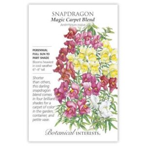 Snapdragon Magic Carpet Blend