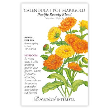 Calendula Pot Marigold (Pacific Beauty Blend)