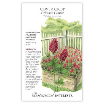 Cover Crop Crimson Clover