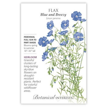 Flax Blue and Breezy