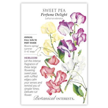 Sweet Pea Perfume Delight