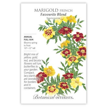 Marigold French Favourite Blend
