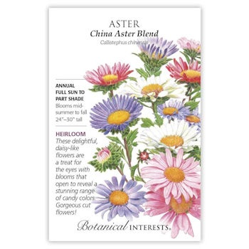 China Aster Blend