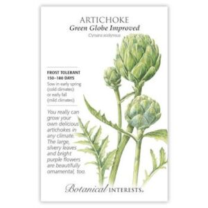 Artichoke Green Globe Improved