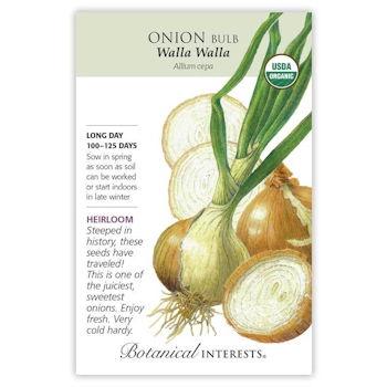 Walla Walla Bulb Onion Seeds ORG Heirloom