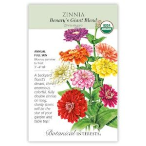 Benary's Giant Blend Zinnia seeds ORG