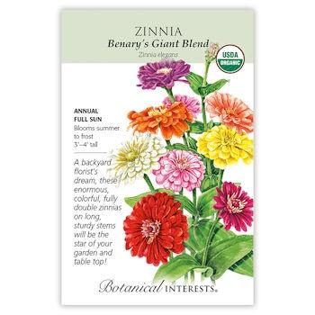Benary's Giant Blend Zinnia seeds ORG
