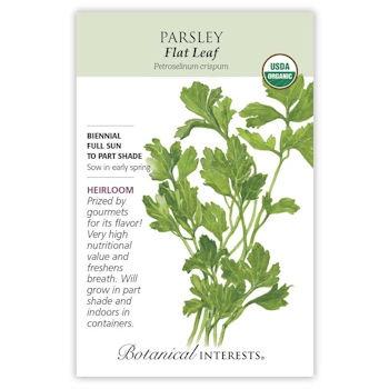 Flat Leaf Parsley Seeds