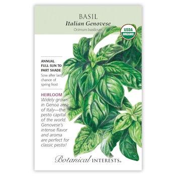 Italian Genovese Basil Seeds ORG, Heirloom