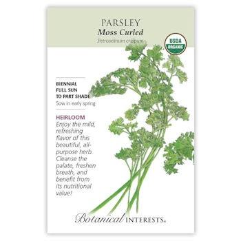 Moss Curled Parsley Seeds ORG, Heirloom