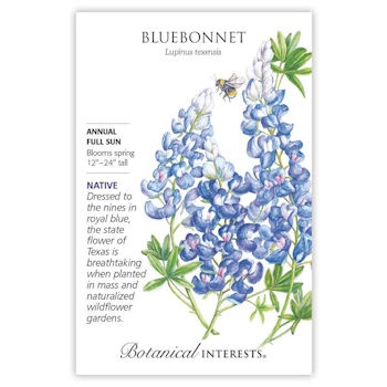 Bluebonnet Seeds, Heirloom, Native