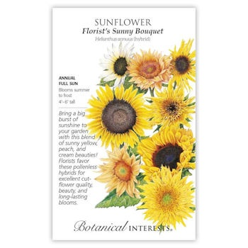 Florist's Sunny Bouquet Sunflower Seeds