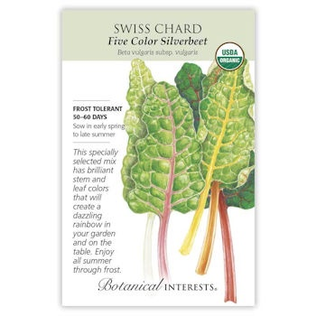 Five Color Silverbeet Swiss Chard Seeds ORG