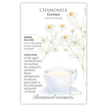German Chamomile Seeds, Heirloom